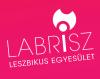 labrisz-logo-web.png